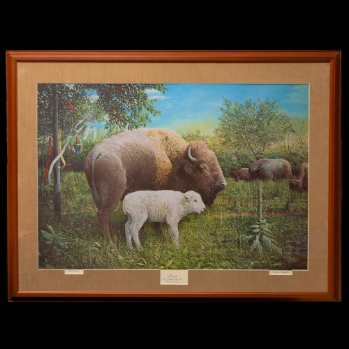 Matted and framed, limited-edition print of the majestic White Buffalo