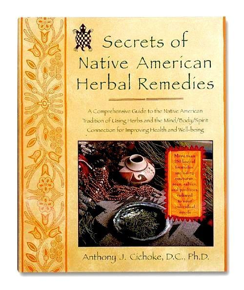 native american herbal remedies pdf